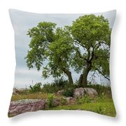 Tree On A Hill 2 Throw Pillow