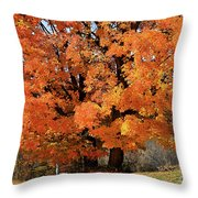 Tree On Fire Throw Pillow