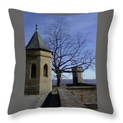 Tree On The Castle Wall Throw Pillow