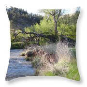 Tree Over The River Throw Pillow