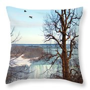 Tree Overlooking The Falls Throw Pillow