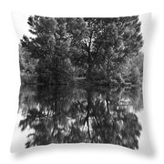Tree Reflection In Black And White Throw Pillow