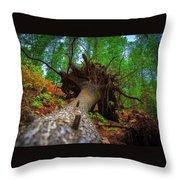 Tree Root Ball Throw Pillow