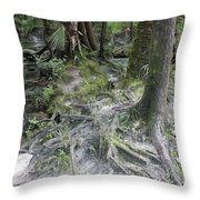 Tree Roots And Lithia Springs Throw Pillow