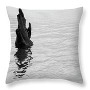 Tree Reflections, Rest In The Water Throw Pillow