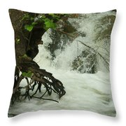 Tree Roots In The Water Throw Pillow