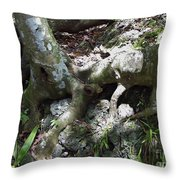 Tree Roots On The Bank Throw Pillow
