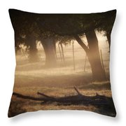 Tree Row In Morning Fog Throw Pillow