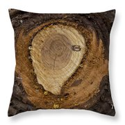 Tree Sap Throw Pillow