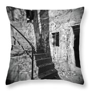 Tree Shadow , Doors And Stairs At The Elder Battery At Fort Delaware Throw Pillow