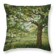 Tree Shadows Throw Pillow