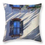 Tree Shadows On Savannah House Throw Pillow