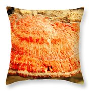 Tree Shell In Shades Of Pumpkin Throw Pillow