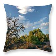 Tree Sky Utah Throw Pillow
