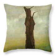 Tree Stilllife Throw Pillow