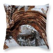 Tree Stump Arch Throw Pillow