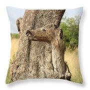 Tree Stump Throw Pillow