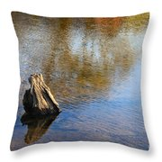 Tree Stump Surrounded By Water Throw Pillow