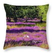 Tree Stumps In Common Heather Field Throw Pillow
