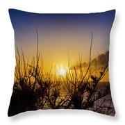 Tree Sunset Throw Pillow