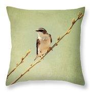 Tree Swallow 4 Throw Pillow