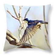 Tree Swallow In Flight Throw Pillow