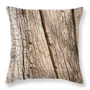 Tree Texture 4 Throw Pillow