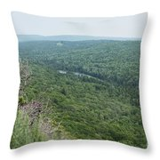 Tree Top Valley Throw Pillow