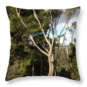 Tree Tops And Beyond Throw Pillow