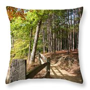 Tree Trail Throw Pillow