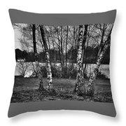 Tree Quartet And The Lake Throw Pillow