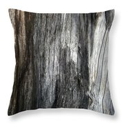 Tree Trunk Abstract Detail Throw Pillow