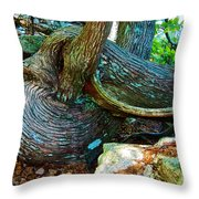 Tree Trunk By Jordan Pond In Acadia National Park-maine Throw Pillow