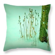 Tree Trunk In Snow Throw Pillow