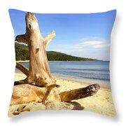 Tree Trunk On Beach Throw Pillow