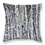 Tree Trunks Covered With Snow In Winter Throw Pillow