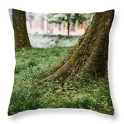 Tree Trunks In Spring Throw Pillow