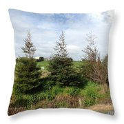 Perfectly Placed Trees Throw Pillow