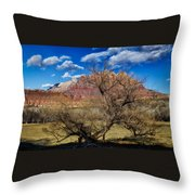 Tree With A View Throw Pillow