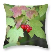 Tree With Red Berry Throw Pillow