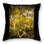 Tree With V Shaped Branches Throw Pillow