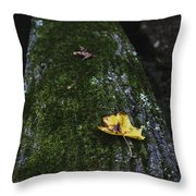Tree With Yellow Leaf Throw Pillow