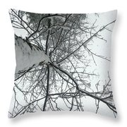 Tree Wrapped In Snow Throw Pillow