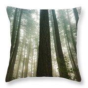 Treed Throw Pillow