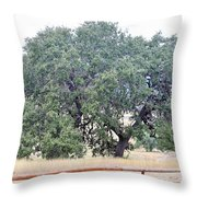 Trees 006 Throw Pillow