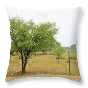 Trees 011 Throw Pillow