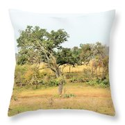 Trees 015 Throw Pillow