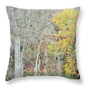 Trees 024 Throw Pillow
