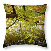 Trees 9684 Throw Pillow