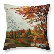 Trees Along The Canal Throw Pillow